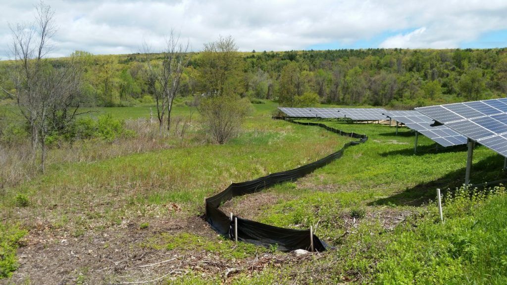 Using a silt fence to protect wetlands following wetland delineation.