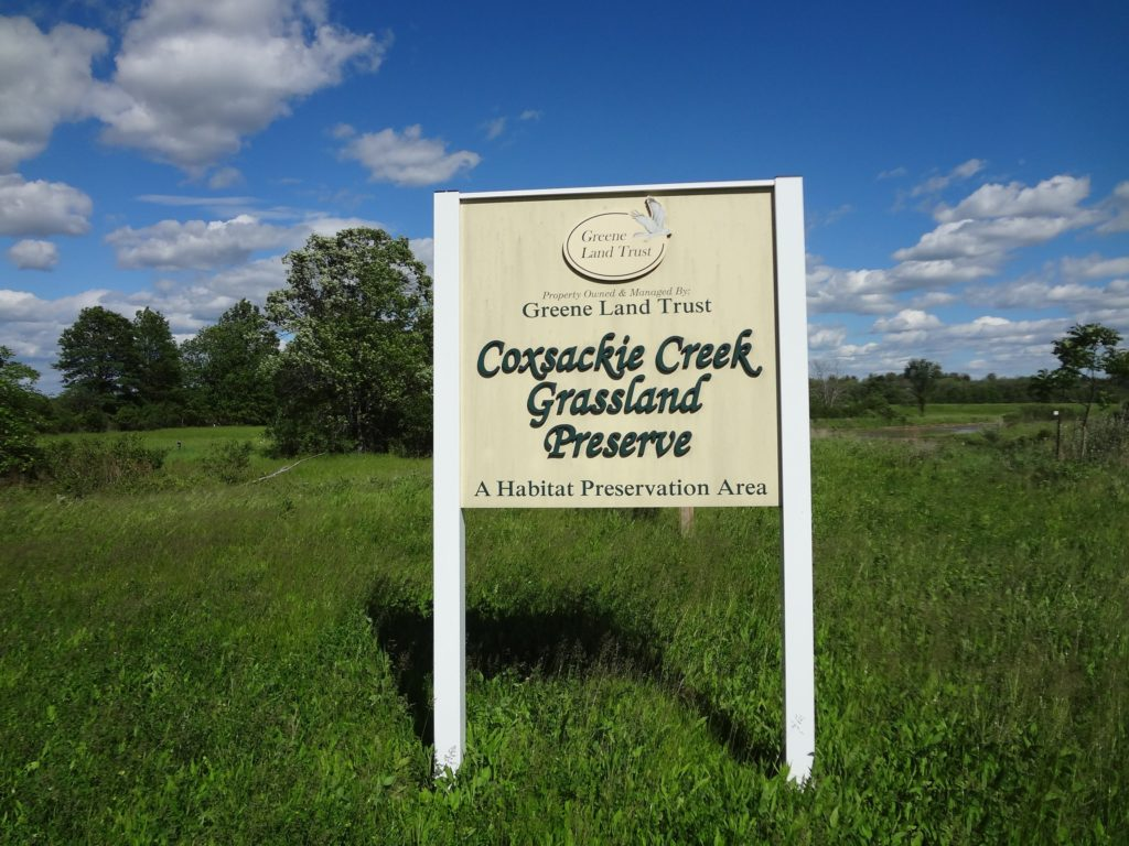 Ecological consulting services and permitting assistance. Grassland bird management plan for the Coxsackie Creek Grassland preserve.