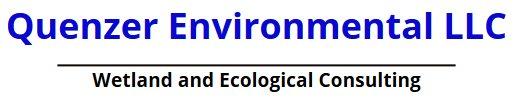 Quenzer Environmental logo